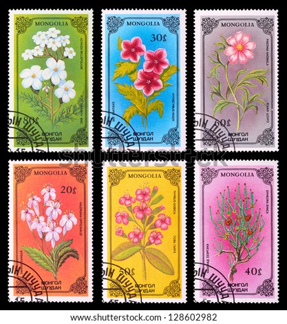 MONGOLIA - CIRCA 1986: A set of postage stamps printed in MONGOLIA shows flowers, series, circa 1986 - stock photo