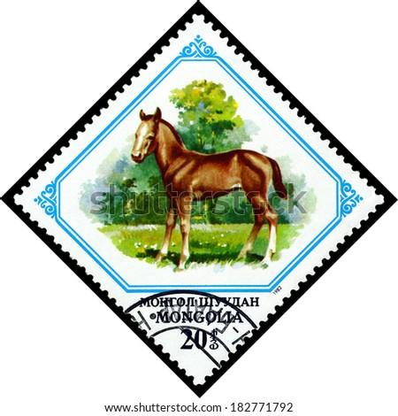 MONGOLIA - CIRCA 1982: A stamp printed in Mongolia shows  Colt, circa 1982 - stock photo