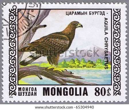 MONGOLIA - CIRCA 1976: A stamp printed in Mongolia shows golden eagle, series devoted to the birds, circa 1976