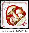 """MONGOLIA - CIRCA 1964: A Stamp printed in MONGOLIA shows image of the Psalliota Campestris, from the series """"Mushrooms"""", circa 1964 - stock photo"""
