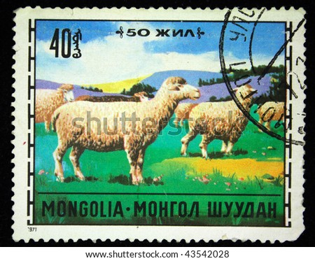 MONGOLIA - CIRCA 1971: A stamp printed in Mongolia shows sheeps, circa 1971