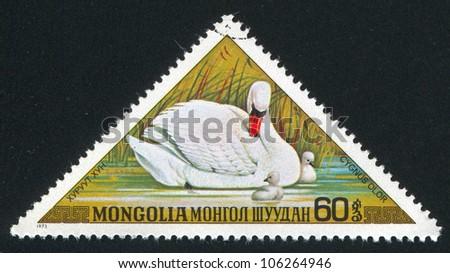 MONGOLIA - CIRCA 1973: stamp printed by Mongolia, shows mother Swans, circa 1973 - stock photo