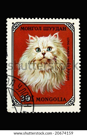 Mongolian postage stamp with long haired white persian cat - stock photo