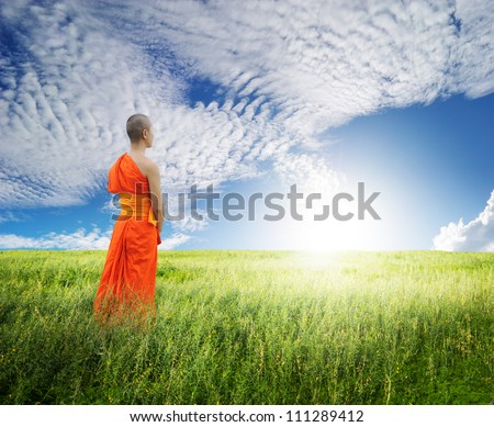 Monk Walk in grass fields and blue sky - stock photo