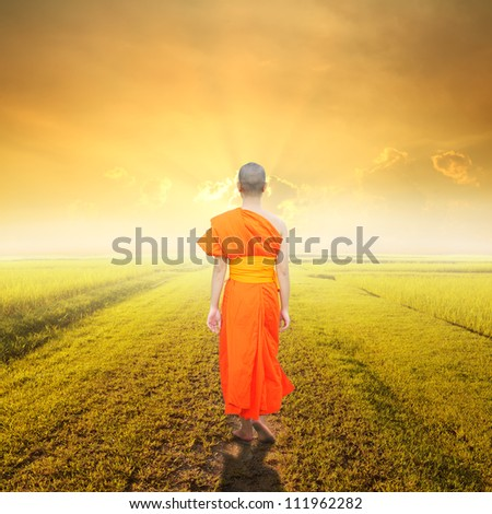 Monk Walk in way of  grass fields and sunset - stock photo