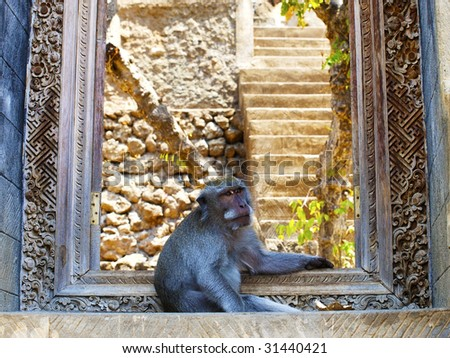 Monkey sitting in doorway to the temple as a guard, Bali, Indonesia - stock photo
