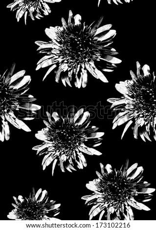 Monochrome flower pattern on black - stock photo