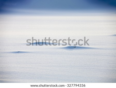 Monochrome Smooth snow texture background - stock photo