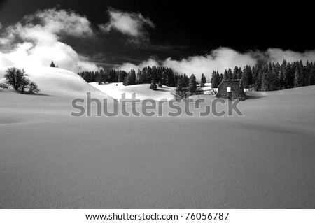 Monochrome winter scene:  a ruined abandoned farm covered in fresh snow with a pine forest in the background - stock photo