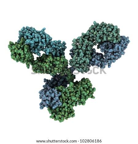 Monoclonal antibody (Immunoglobulin G, IgG1, mAb) molecule, chemical structure. Most current biotech drugs are monoclonal antibodies. - stock photo