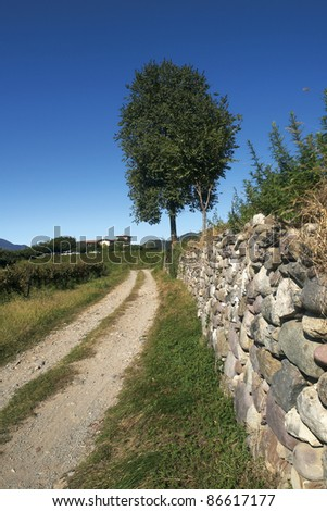 Monterotondo (Bs), Franciacorta, Italy, an ancient wall in the vineyards