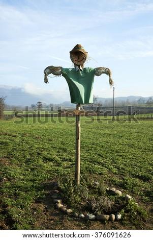 Monterotondo (Bs), Italy, a scarecrow in a field