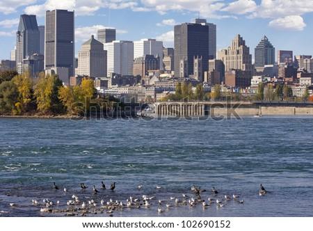 Montreal skyline - stock photo