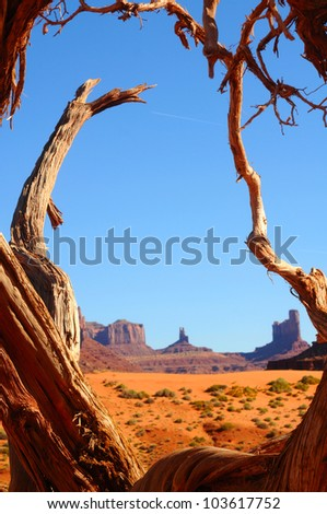 Monument Valley buttes framed by a gnarled old tree