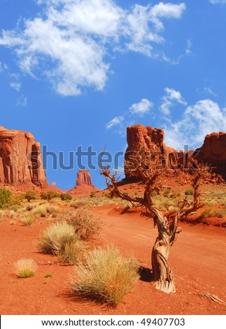 Monument Vally rock formations with lone tree and shrubs in foreground - stock photo