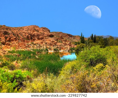 Moon and desert pond in winter Arizona - stock photo