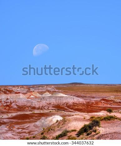 Moon and scenic landscape of ancient petrified trees Arizona - stock photo