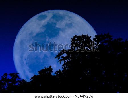 moon in the dark night - stock photo