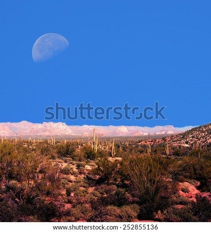 Moon over Sonora desert in central Arizona USA - stock photo