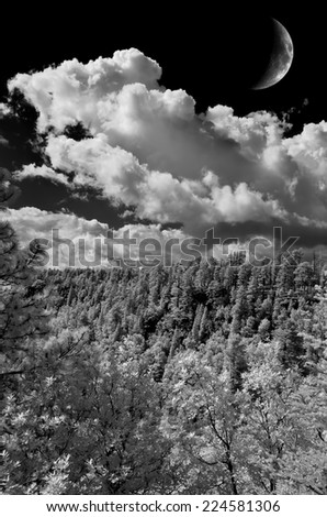 Moon over the southwestern USA forest and mountains - stock photo