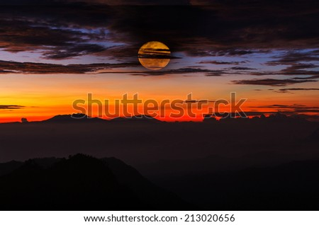Moonlight in forest - stock photo