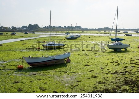 Moored boats beached on seaweed at Emsworth, Hampshire, England. In Chichester Harbour - stock photo