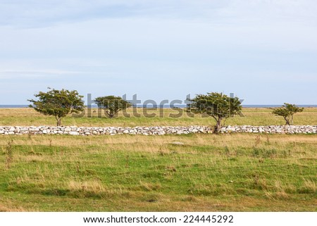 Moorland with a high stone wall - stock photo