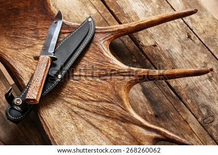 Moose antler with hunting knives on wooden background - stock photo