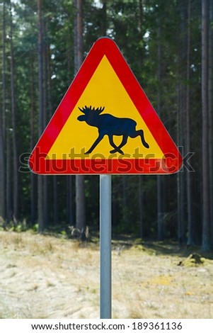 Moose roadsign in a foresty area - stock photo