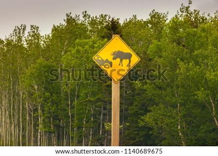 Moose Sign In Newfoundland St Johns Newfoundland And La Dor Canada