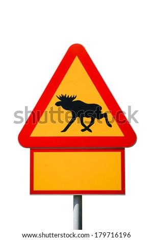 Moose warning sign isolated - stock photo
