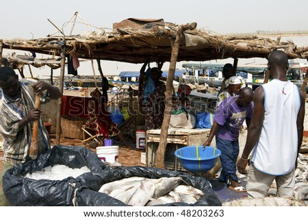 MOPTI - AUGUST 16: Fishermen in the port of Mopti, the sale of fresh fish is done daily in the port of Mopti, August 16, 2009 in Mopti, Mali - stock photo