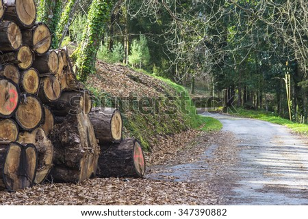 More wood - stock photo