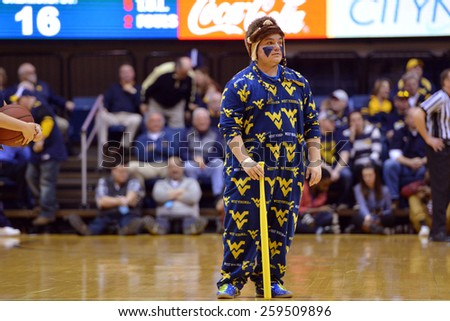 MORGANTOWN, WV - MARCH 7: A WVU fan, dressed in a school onesie, prepares to compete in a dizzy bat race during the Big 12 Conference college basketball game March 7, 2015 in Morgantown, WV.  - stock photo