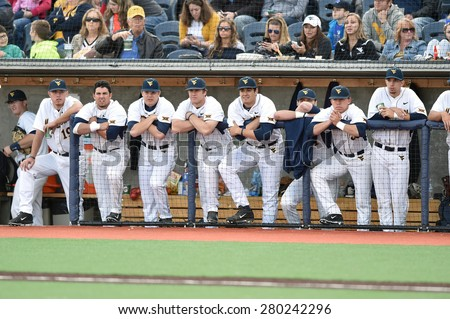 MORGANTOWN, WV - MAY 1: The WVU bench watches from the dugout during a Big 12 conference baseball game May 1, 2015 in Morgantown, WV.  - stock photo