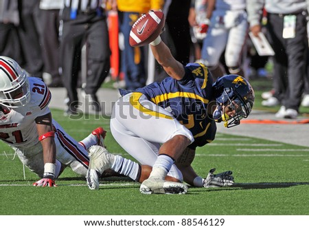 MORGANTOWN, WV - NOVEMBER 5: WVU wide receiver Stedman Bailey (blue) holds the ball up after making a long catch during the football game between Louisville and WVU November 5, 2011 in Morgantown, WV. - stock photo