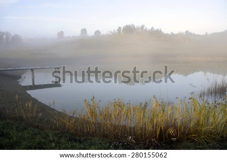 Morning at the pond - stock photo