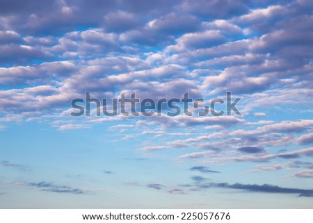Morning cirrus clouds against a blue sky