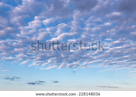 Morning cirrus clouds against a blue sky - stock photo