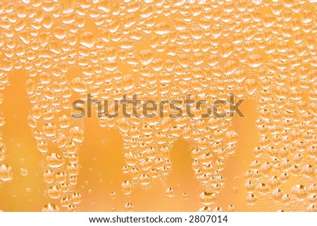 Morning dew droplets on window with backyard tree branches reflected, sunrise golden - stock photo