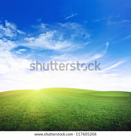 Morning field. Summer good weather - stock photo
