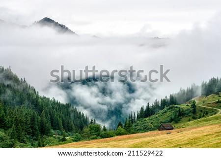 Morning fog in countryside in Austria - stock photo