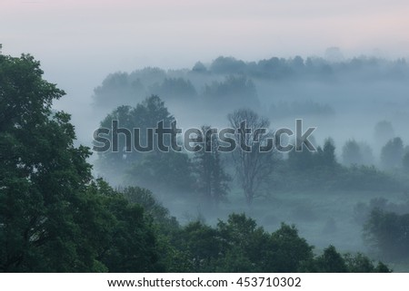 Morning fog in the valley of the river Istra. Moscow region. Russia. - stock photo