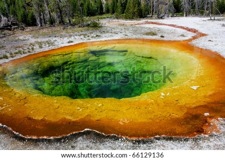 morning glory pool, yellowstone national park,. wyoming