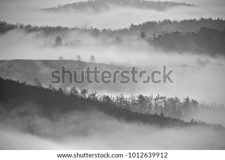 Morning haze on mountain in black and white