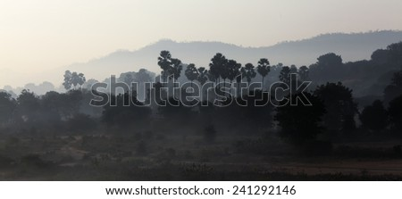 Morning Landscape - stock photo