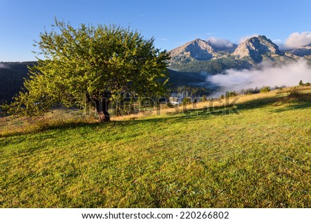 Morning landscape with a view on the mountain peaks in National Park Durmitor - Montenegro - stock photo