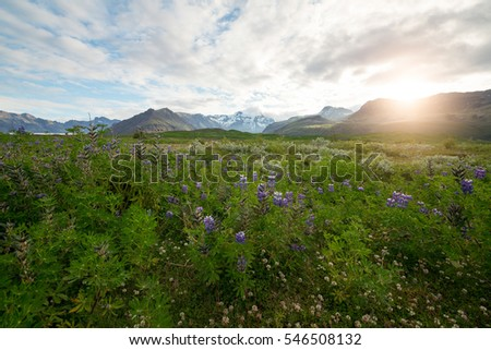 Morning light in Iceland