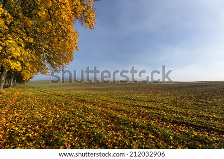 Morning light in Kashubia province in north Poland/Autumn field - stock photo