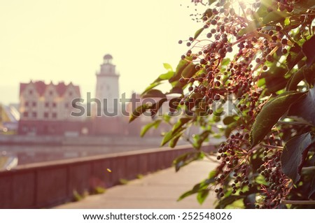 Morning light on the Kaliningrad street, with toning effect - stock photo